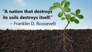 Healthy Soils